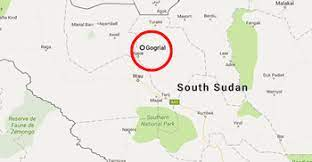 12 killed during cattle raid over the weekend in Gogrial East